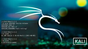 Kali Linux 2021.3: Forensik-Distribution mit spezialisierten Werkzeugen