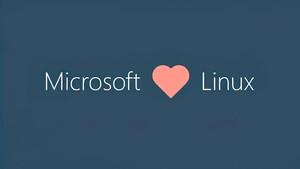 Windows Subsystem für Linux: Kompatibilitätsschicht als Vorschau für Windows 11