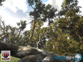 SpeedTreeRT in Unreal-3-Engine