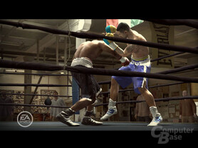 Fight Night Round 3 auf Xbox 360