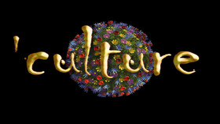 Culture erstellt mit XNA