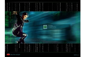 Windows XP Logon Matrix