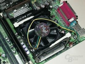 Intel Boxed Kühler