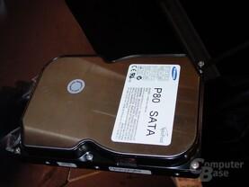 SATA Festplatte