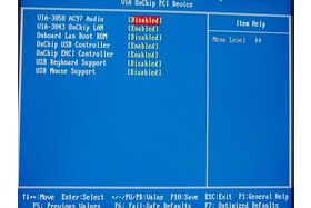 """Bios - """"Onboard PCI Devices"""""""
