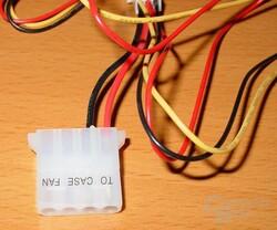 NXP-205 - Molex-Stecker