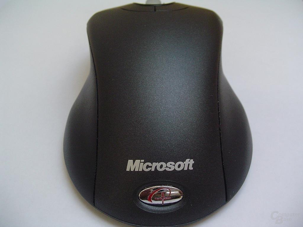 Maus von hinten