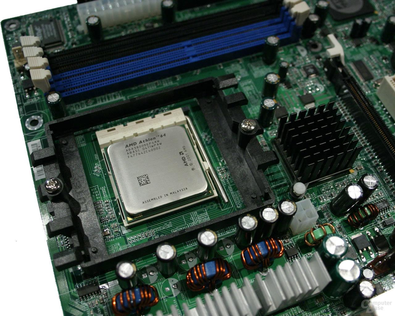 Für den Test gesellte sich ein Athlon 64 3800+ (Newcastle) zum Board.