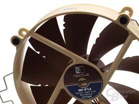 Noctua NF-P14 (140 mm)