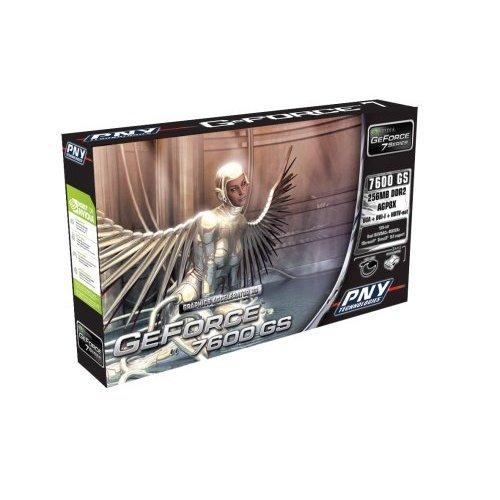 GeForce 7600 GS für AGP