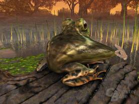 Froggy Techdemo 3
