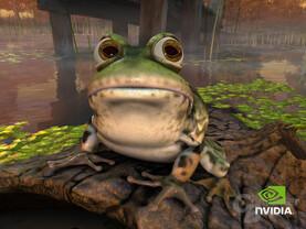 nVidia Demo Frosch