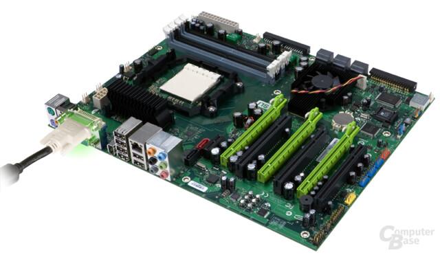 nForce 780a mit DVI-Anschluss