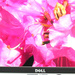 Dell UltraSharp 2408WFP im Test: Cineastischer Fotoprofi für Spieler