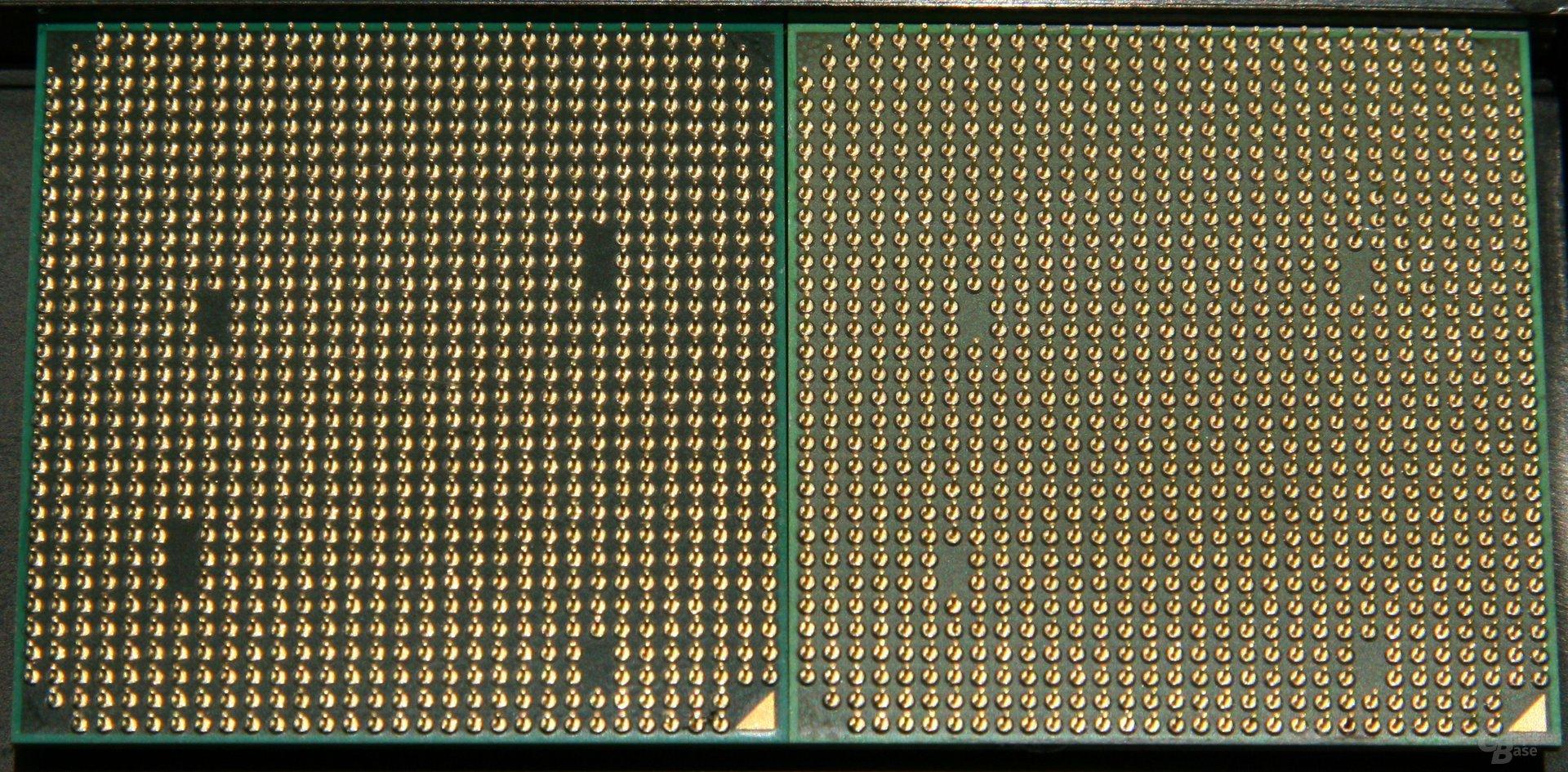 Links: AM3-CPU mit zwei Aussparungen für drei Pins, zwei für zwei Pins Rechts: AM2-CPU mit vier Aussparungen für je zwei Pins