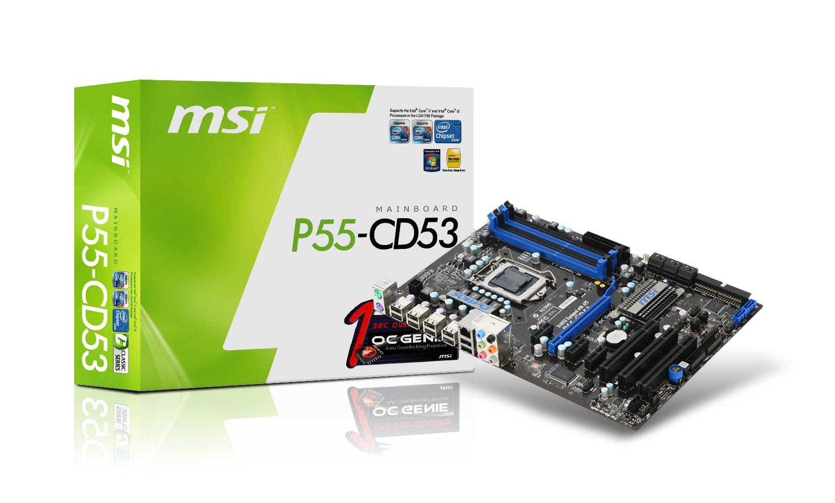 P55-CD53