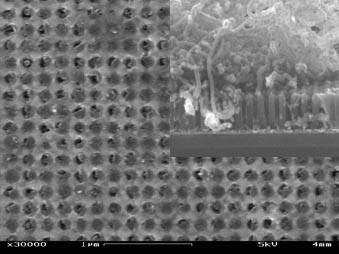 Kohlenstoffnanoröhren auf einem Gerüst aus Aluminiumoxid