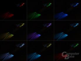 Sieben verschiedene Farben und viele Kombinationsmöglichkeiten