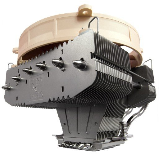 Noctua NH-C12P Sonderedition