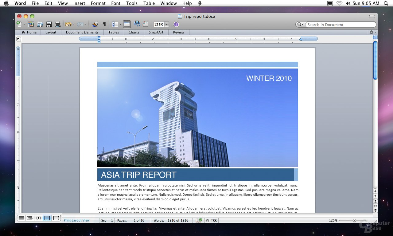 Microsoft Office for Mac 2011 (Word)