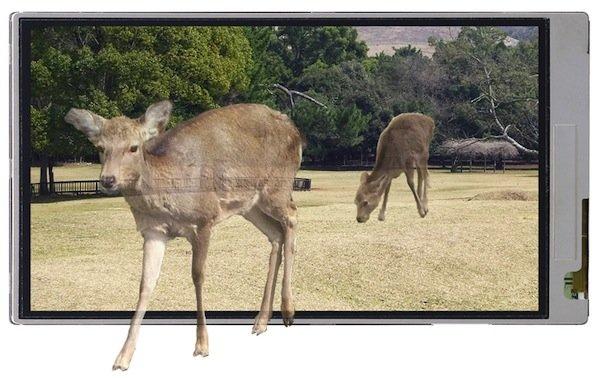 3D-LCD von Sharp