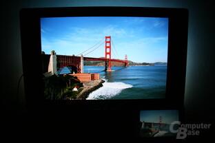 WiDi im Einsatz: Fotos vom Notebook auf TV gelegt