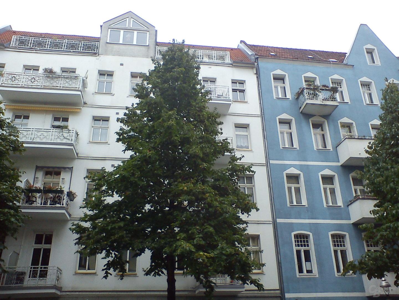 Kameraaufnahme 3 (Baum vor Fassaden)