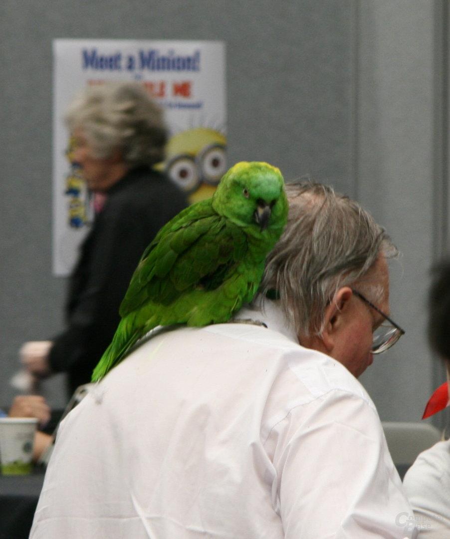 Ja, das ist ein echter, lebender Papagei!