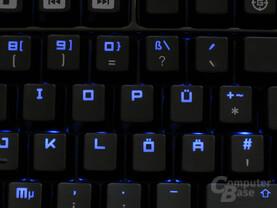 BlackWidow Beleuchtung Detail