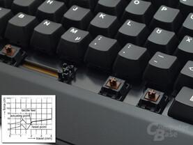 Taster: Cherry MX (braun) mit ergonomischem Anschlag