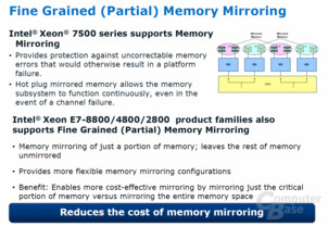 Fine Grained (Partial) Memory Mirroring