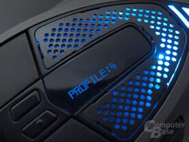 Display mit Profil- und dpi-Anzeige
