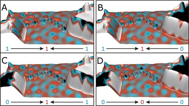 """Bilder des Nano-Spintronik-Logikgatters, das mit der Nadel eines spinsensitiven Rastertunnelmikroskops ausgelesen wurde. Es handelt sich bei dem Bauteil um ein """"Oder-Gatter"""", d. h. zeigt der Spin von beiden Eingabe-Inseln nach unten (D), dann zeigt auch der Spin des Ausgabe-Atoms nach unten (blau). Zeigen die Spins einer oder beider Inseln nach oben (A-C), so wird auch der Spin des Ausgabe-Atoms nach oben ausgerichtet (rot)."""