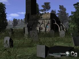 Verschwommen: Das Gras am Boden