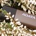 Adata Nobility N005 Pro im Test: Ein USB-Stick nur für große Dateien