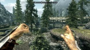 Nvidia GF110 - Skyrim