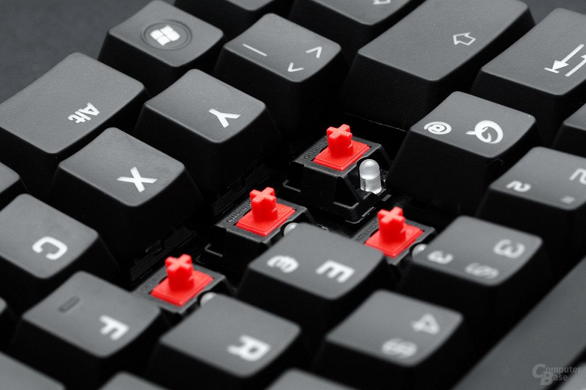 Cherry MX red: Qpad MK-50 und MK-85