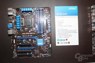 MSI B75A-G43