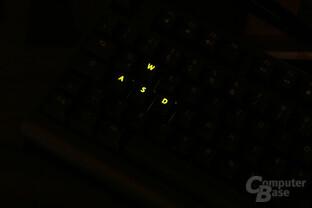 WASD-Licht
