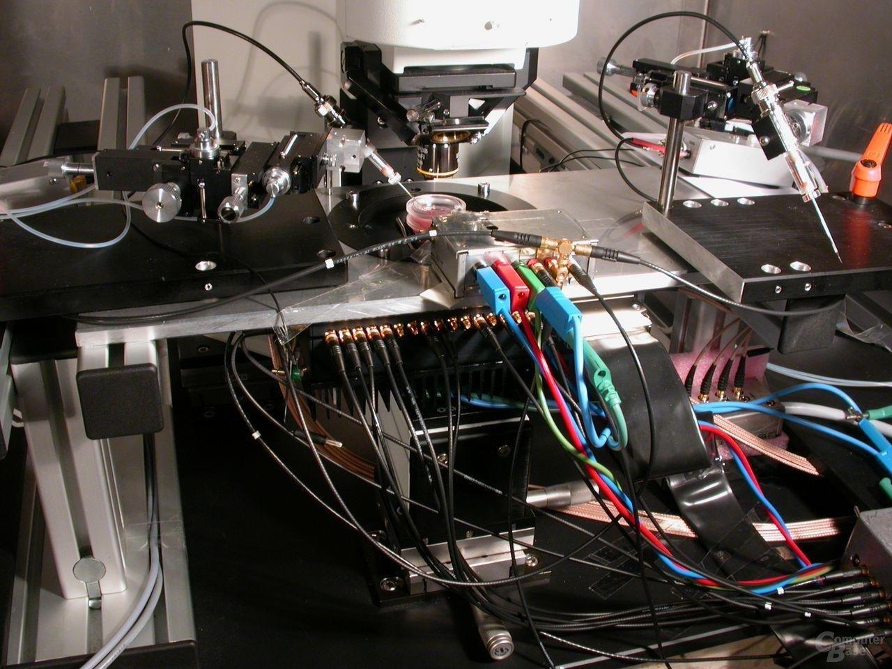 """Der """"Neuro-Chip"""" nimmt elektrische Signale von lebenden Nervenzellen und Zellverbänden auf und gibt sie an ein Computersystem weiter."""