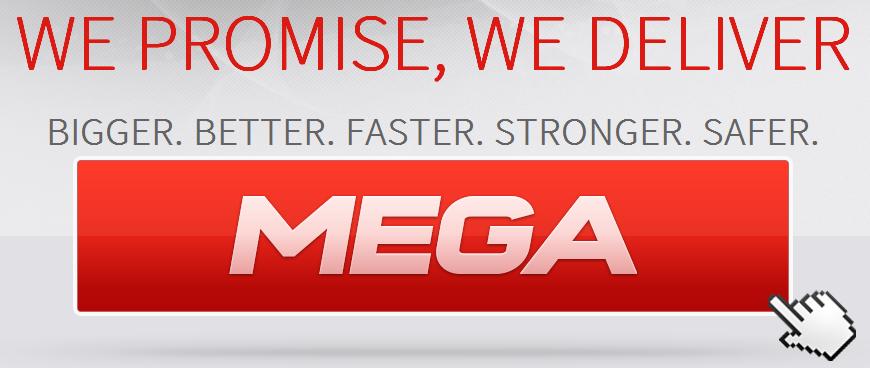 Auszug aus der Mega-Internetseite