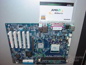 QDI K8A8000 mit AMD 8111 Chipsatz.JPG