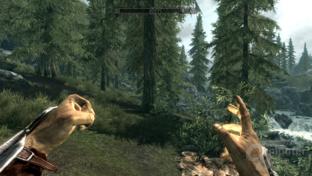 Nvidia Kepler - Skyrim