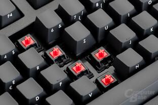 In der vorgestellten Version kommen rote MX-Schalter zum Einsatz