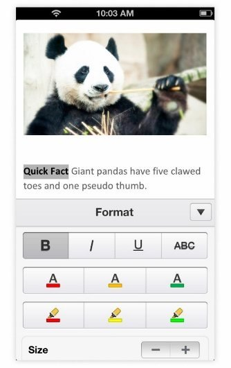 Office Mobile (iOS): Word