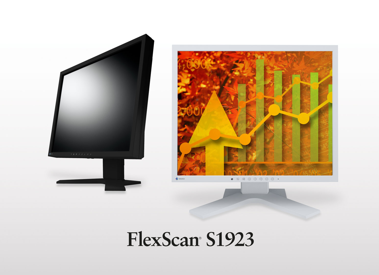 Eizo FlexScan S1923