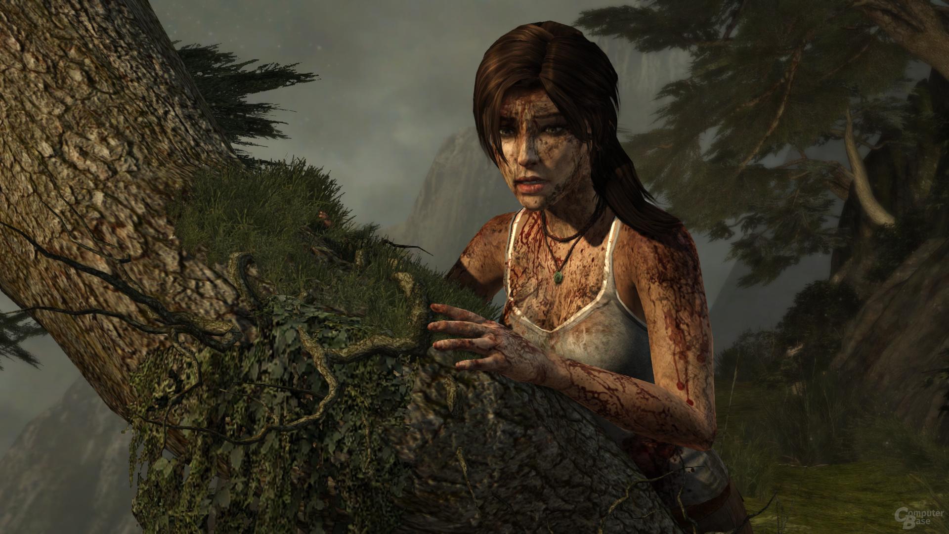 Tomb Raider, reduzierte Details, DX10