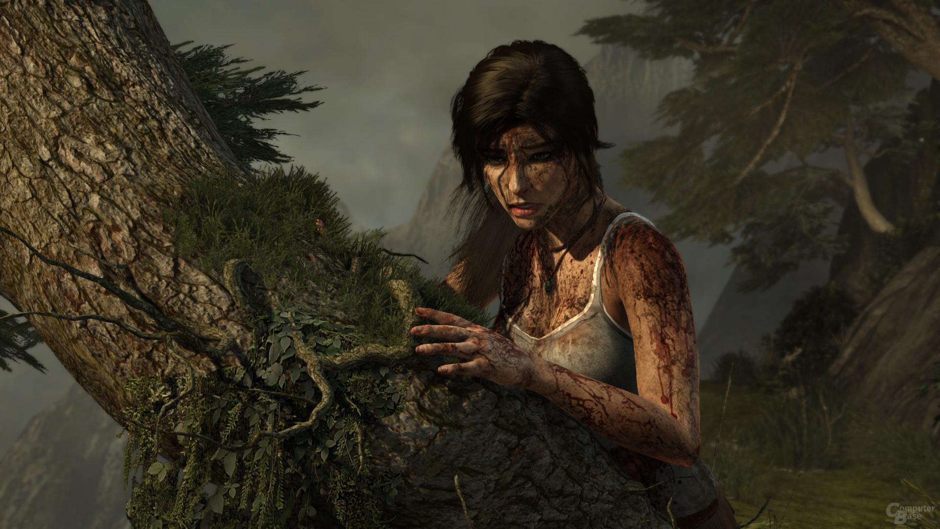 Tomb Raider, maximale Details, DX11