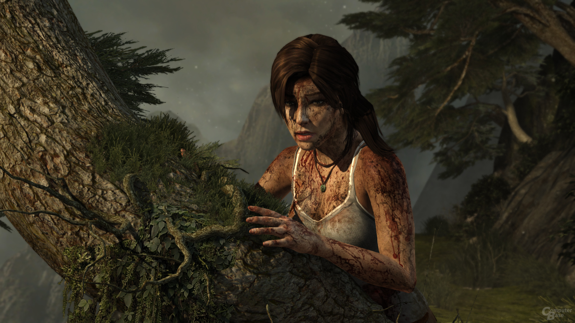 Tomb Raider, reduzierte Details, DX11