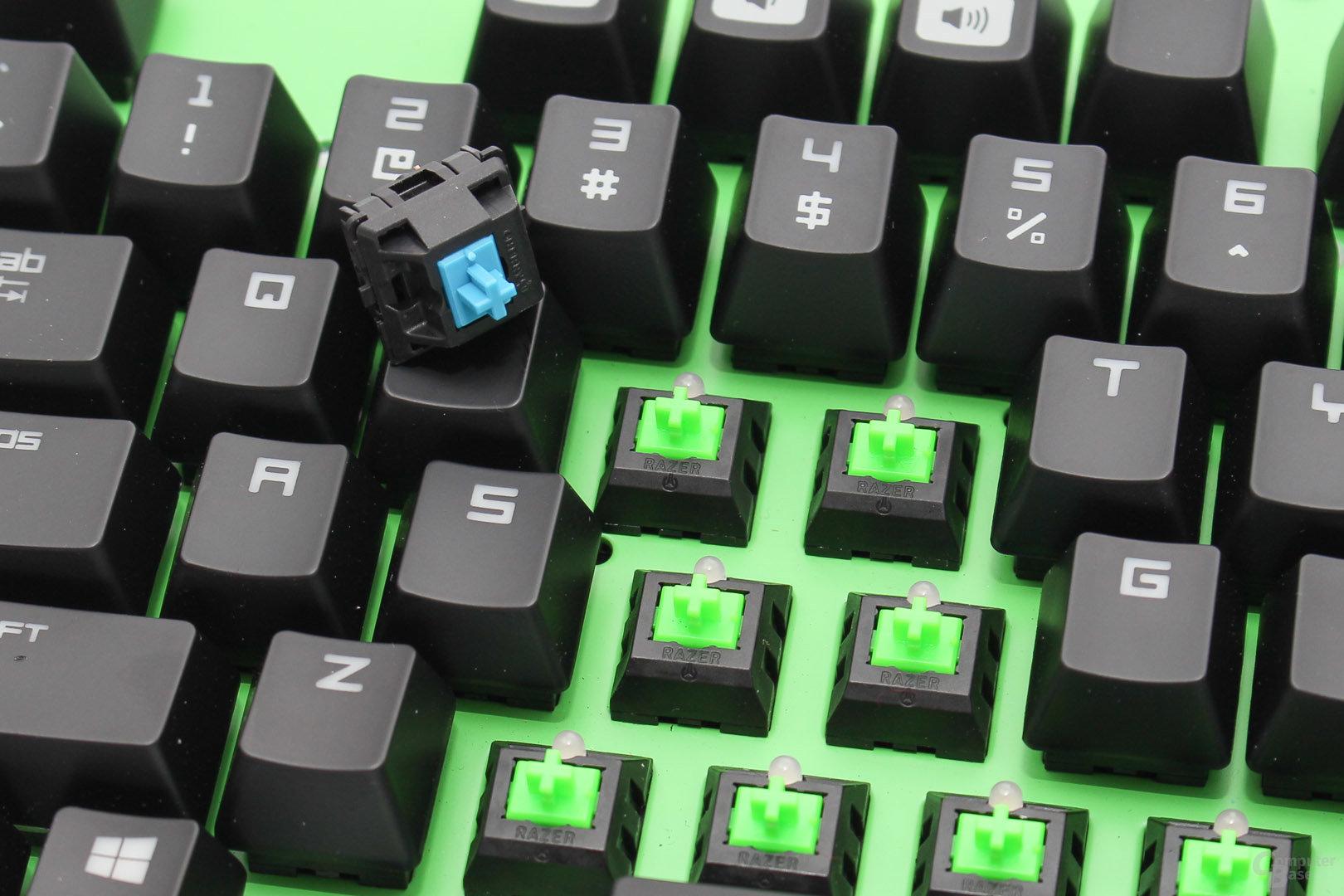 kein spürbarer Unterschied: MX Blue und Razer Green